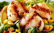 Rec Salat S Grebeshkami