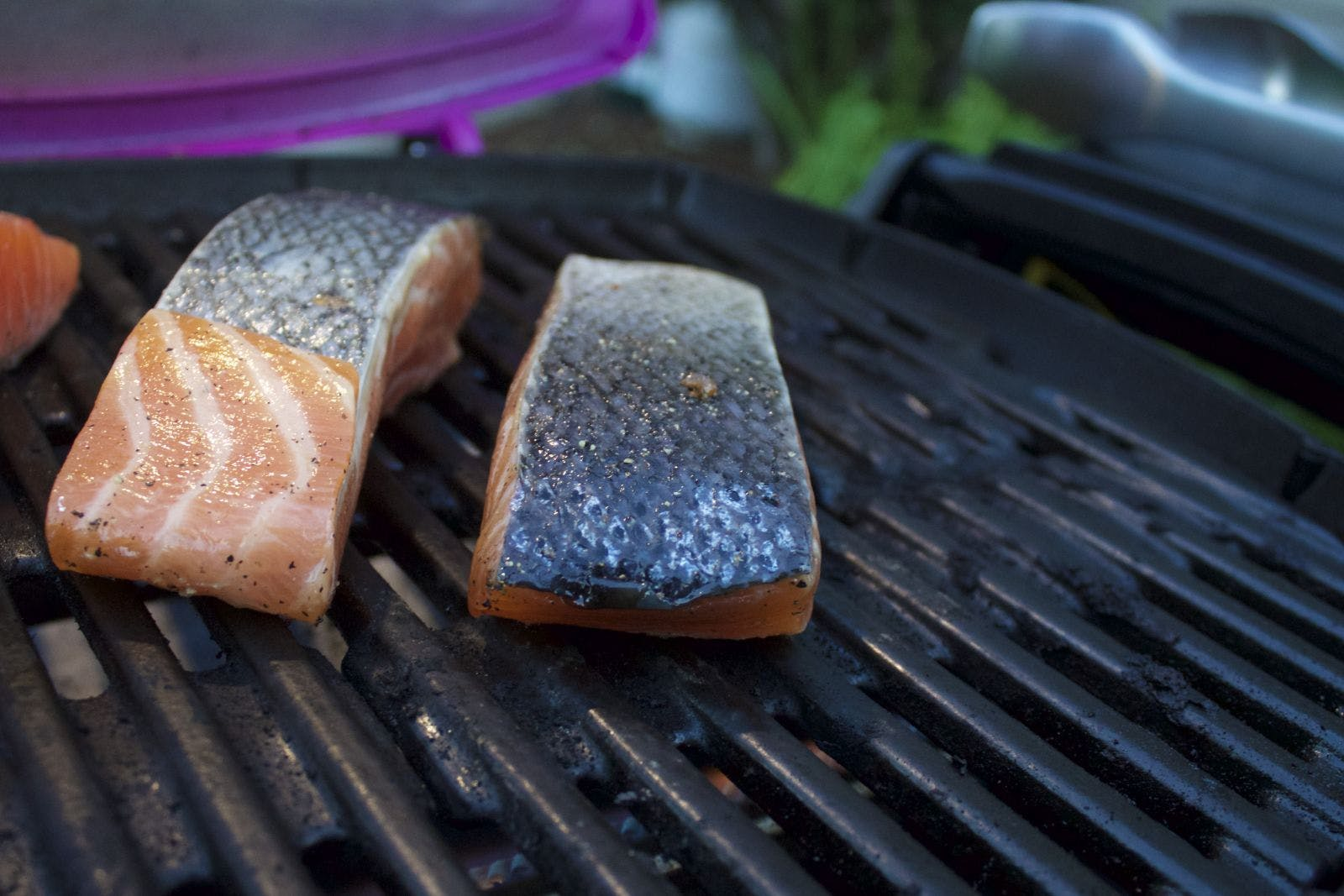 Salmon on Weber Q 1200 Cooking Grates